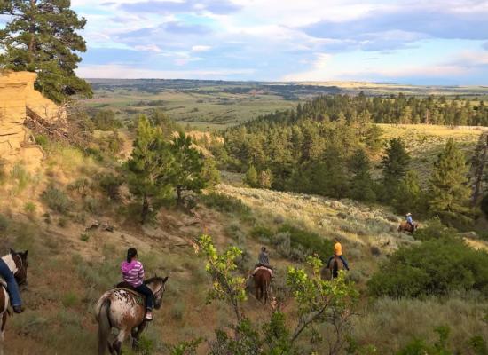 Billings Horseback Rides