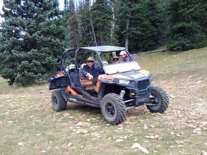 Pryor Mountain Wild Horse Adv